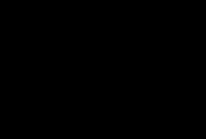 RAA logo map black