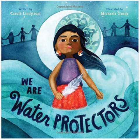 """Book cover showing Native American girl on blue background. Title is """"We Are Water Protectors."""""""